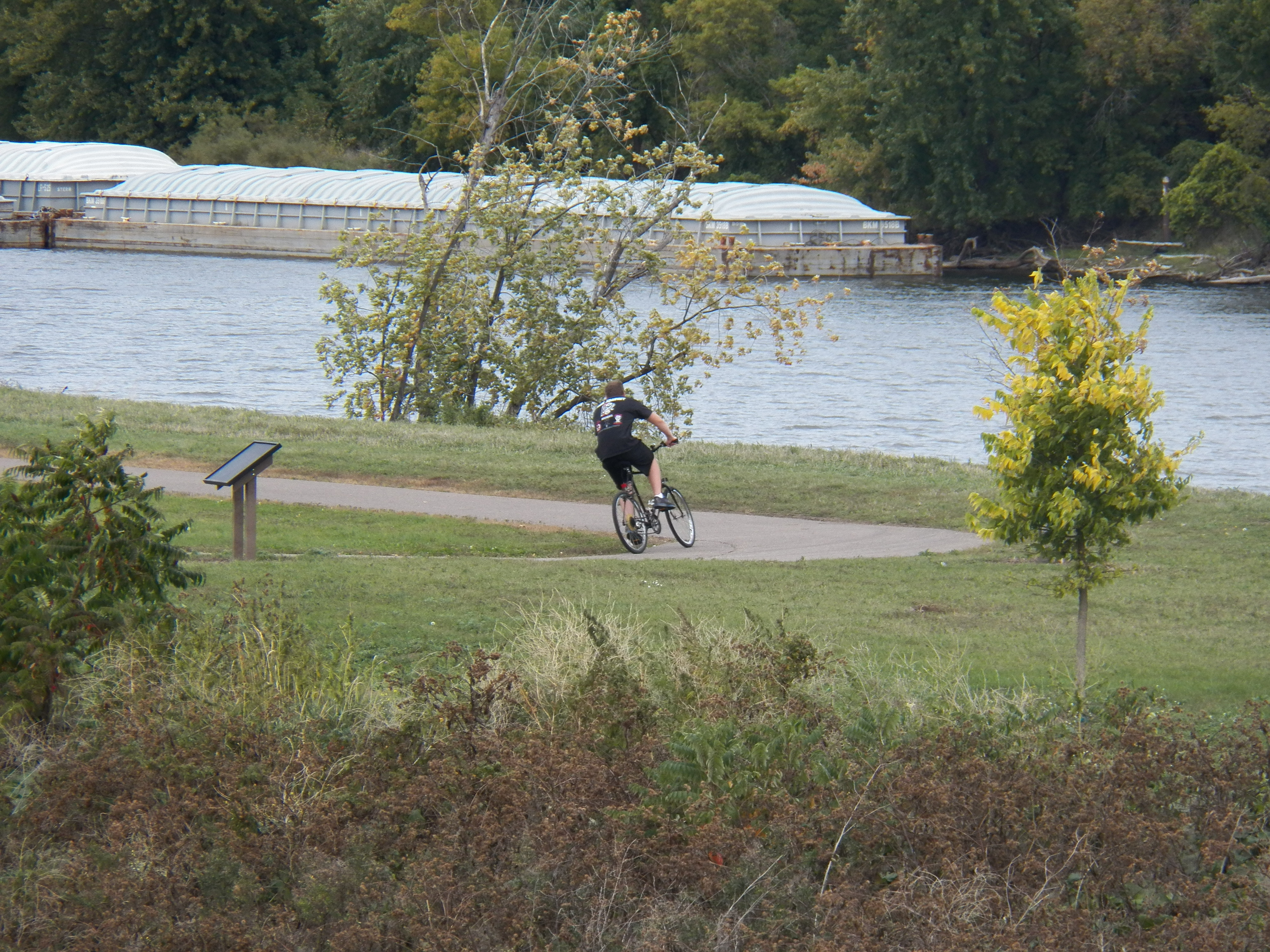 Man Riding Bike on Path